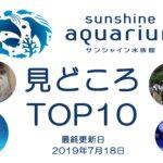【へんないきもの展3+うんこ開催中】サンシャイン水族館の見どころトップテン