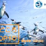 【6/8営業再開】サンシャイン水族館の見どころトップテン