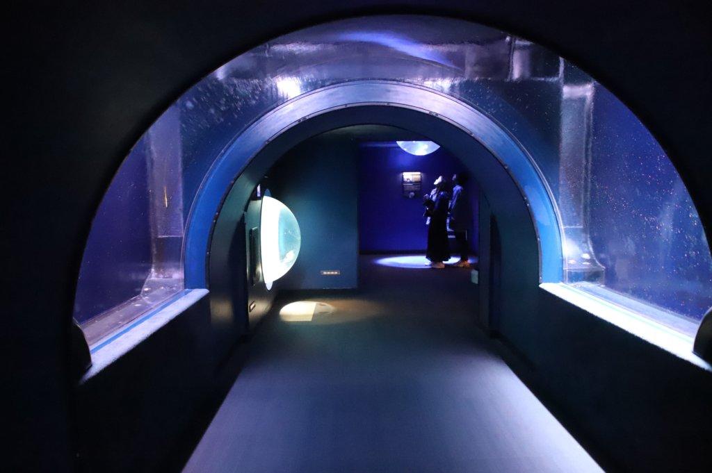 水を抜いたトンネル水槽